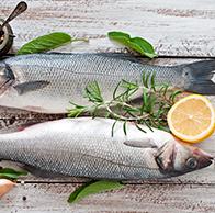 Intolerância a Peixes, crustáceos e frutos do mar: